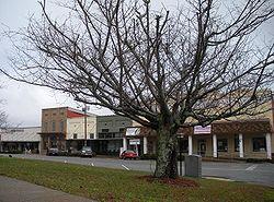 city of Dadeville, AL alta survey