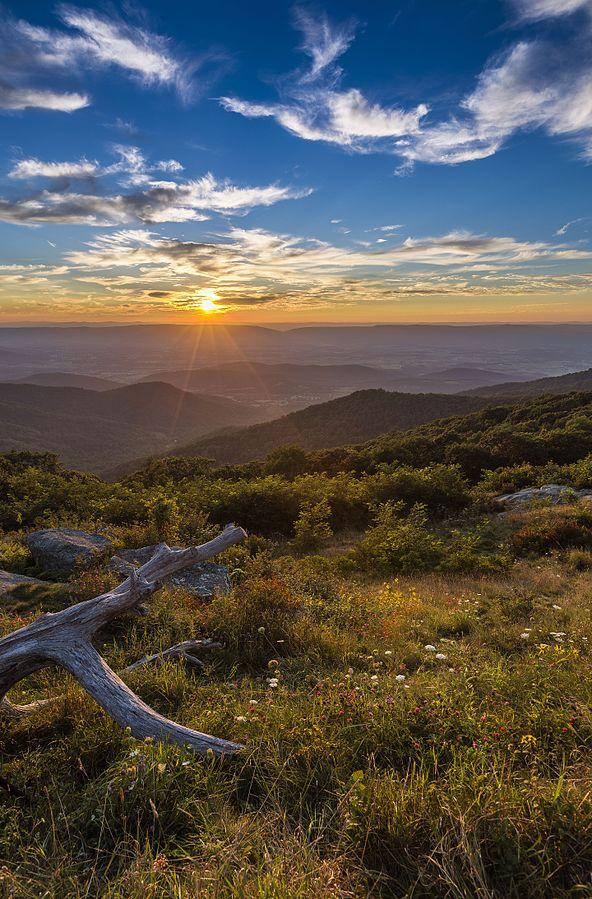 Blue Ridge Mountains of Virginia - ALTA Survey Virginia